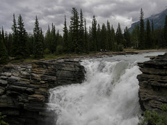 Athabasca Falls (F. Ovies) Tags: canada montaas rocosas