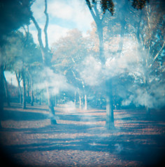 Clouds In The Park - Multiple Exposure; Manhasset, New York (hogophotoNY) Tags: park ny 120 film clouds analog mediumformat holga scan 120film multipleexposure scanned nystate holgamods thedarkroom manhasset hogophoto