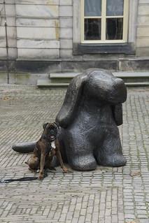 Boxer Marly voor het Noord Brabants Museum in Den Bosch 20-12-2015