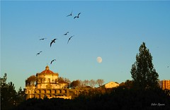 Entardecer no Porto - Portugal (Valcir Siqueira) Tags: sunset moon portugal birds cityscape porto