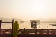Morning souls | Jal Mahal,Jaipur. (vjisin) Tags: rajasthan india iamnikon nikond3200 asia incredibleindia indianheritage travelphotography travel nikon jalmahal touristplace dawn sunlight shadows sun mahal bird indianstreetphotography streetphotography light outdoor dynamic indianwoman pigeons