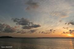 AIMG_8586 (samounette973) Tags: canoneos 750d sunrise colorful couchédesoleil cayenne guyanefrançaise vieuxport 1855mm couleur canon750d sky skytheme reflet nuage soleil silhouette oceanview blue