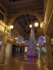 Christmas at the Grosvenor (catz5555) Tags: chester christmas tree grosvenor shopping decorations