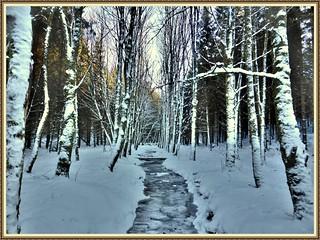 Il était une fois l'hiver