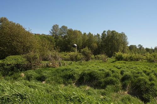 Colony Farm Regional Park