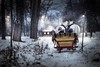 Winter tale (Once upon a time) (iwona_podlasinska) Tags: kids winter snow house sleigh horses children lights night trees
