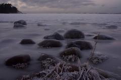 The Non-Rolling Stones (Basse911) Tags: stones kiviä stenar husbeach husstranden beach ranta strand playa plage ice frozensea balticsea östersjön itämeri ostsee winter talvi vinter january tammikuu januari hangö hanko finland suomi nordic