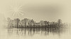 Spiegelung auf Eis - Reflection on Ice (ralfkai41) Tags: winter see sonnenuntergang bw outdoor trees natur blackwhite mirroring sun sunset schwarzweis silhouette eis sw reflection nature spiegelung monochrom lakemsilhouettes reflektion bäume sonne ice wow