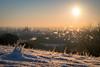 sunrise over regensburg (phlickrron) Tags: regensburg sunrise snow nature city cityscape outdoors cold dof detail sun oberpfalz bavaria landscape urban