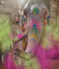 Fae~My Holi Friend (Skip Staheli CLOSED FOR CLIENTS) Tags: faenocturne skipstaheli secondlife sl avatar elephant fantasy holi powder indian virtualworld digitalpainting painted