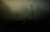 Haar (Tamas Katai) Tags: edinburgh scotland winter meadows fog mist haar morning light moody trees uk city park urban