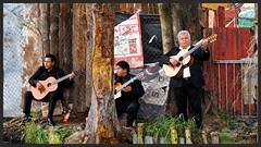 Xochimilco Mariachis (jpmacunha) Tags: mexico mariachis river music gente trajinera guitarra band distrito federal musicos mex musicians cantante xochimilco
