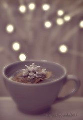 4/52 'whimsical' (pics by paula) Tags: 452 whimsical challenge tea set bag cup bokeh lights miniature magical silly picsbypaula soft 52weeks 2017