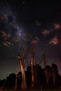 Carina Nebula - Harvey Dam, Western Australia
