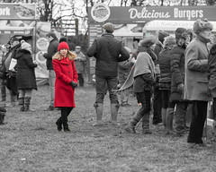 Enjoying a day at the Point to Point (Steve Barowik) Tags: yorkraces racecourse grandstand horse jockey trainer groom cropframe saddle plate whip hunter chaser hound pointtopoint point2point stevebarowik barowik 70200mmf28vrii jorvik ebor eboracum jump fence hurdle canter hack sbofls26 nikond500 quantumentanglement wonderfulworld unlimitedphotos flickrelite dx westofyore hunt askhambryan