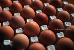 _Eggs (marziabertelli) Tags: food colors grande famiglia natura fresh follow giallo eggs napoli rosso colori fresco cibo uovo gallina orto confezione uova