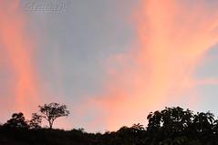 4 Sunset... (GFerreiraJr ) Tags: sunset brazil brasil nikon gettyimages nationalgeographic d90 campinassp micmarayyo nikond90 flickraward nikonflickraward panoramafotogrfico touraroundtheworld flickrunitedaward brasilemimagens gferreirajr