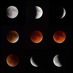 2015 lunar eclipse: grid (ewan.osullivan) Tags: moon eclipse montage astronomy lunar lunareclipse bloodmoon 2015