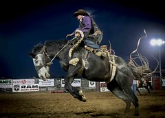 Bronc Rider (_bobmcclure_) Tags: andy days rodeo bronco buster rider bronc devine