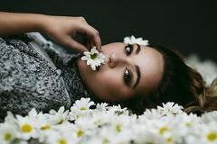 Cailee Rae (isayx3) Tags: portrait daisies studio paul pretty dof f14 einstein 85mm edward daisy buff plm d800 mcgowan onelight strobist plainjoe isayx3 caileerae caileeraemusic