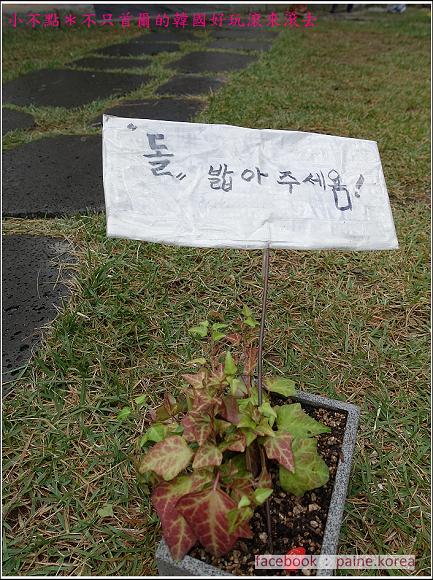 全州漫遊 (46).JPG