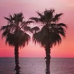 #tramonto #rosso #tranquillità #Civitavecchia (Simone Cervarelli) Tags: tramonto rosso civitavecchia tranquillit uploaded:by=flickstagram instagram:photo=663769735841838207398935124