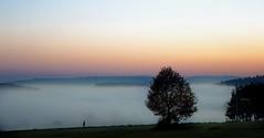 walking on the edge (Henry der Mops) Tags: autumn sunset mist misty fog walking sonnenuntergang nebel herbst wandern abendhimmel abendrot herbststimmung img3841 canonlens24105mm nebelstimmung canoneos6d henrydermops mplez