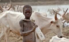 20100206_terekeka_0002 (mmireya) Tags: africa southsudan sudan continent staging 2010 cartercenter extensis guineaworm worldlocation healthprograms feb2010 dpubinfo guineawormeradicationprogram terekekacokunty 20100206terekeka0002
