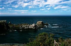 A Natural Jetty! (muirtrail68) Tags: nikon horizon f100 californiacoast filmscan rockycoastline bluepacific coolscan4000