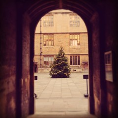 Christmas Tree at the Bod (breakbeat) Tags: christmas door tree architecture square university arch library historic doorway oxford squareformat archway hefe bodleian iphoneography instagramapp uploaded:by=instagram foursquare:venue=4b7aae05f964a520ed362fe3
