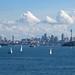 sydney harbour gt6
