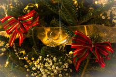 Christmas 2016 (craigdrezek9) Tags: christmas 2016 christmas2016 nikon d7100 wishes christmaswishes tree whale bow christmastree