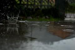 It's raining... (Judit T) Tags: splash rain reflection