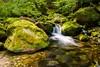2017_001 (kgorka) Tags: gorkabarreras canon eos7d manfrotto infiesto asturias piloña mt055cxpro3 rio river naturaleza paisaje natura landscape otoño