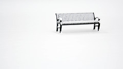 The Snow Fell (HW111) Tags: bench park snow minimalism winter