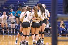 IMG_8343 (SJH Foto) Tags: girls volleyball high school york delone catholic team teen teenager huddle cheer hug