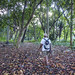 walking to the park havana cuba