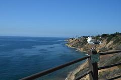 Seagull on California Coast (trailwalker52) Tags: pigeon california californiabeach bird ocean shoreline seagull californiacoast californiacliff