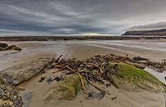 Waiting for high tide (Through Bri`s Lens) Tags: yorkshire robinhoodsbay thabay lowtide weed kelp brianspicer canon5dmk3 canon1635f4