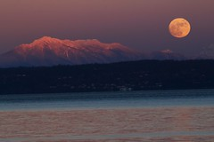 IMG_8988 (murraymike89410) Tags: kingston washington 100400 fullmoon wolfmoon alpenglow
