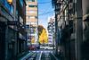 DSC_4314 (juor2) Tags: only street streetsnap d4 nikon scene shinjuku gingko morning japan tokyo