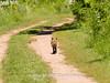 Duke Farms-6142713-2 (myobb (David Lopes)) Tags: dukefarms hillsborough nj newjersey nature olympus em1 omd