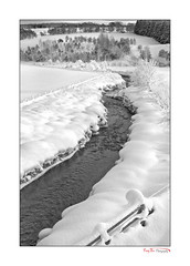Free Flowing_2405 BW (The Terry Eve Archive) Tags: stream river flowing snow cold frozen ice trees blackandwhite