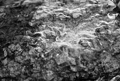Perception (gajet123) Tags: ice water nature nikon d5000 tamron
