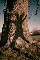 The Hidden Ghost (wiedemannmaximilian) Tags: ghost shadow dance dancing fun tree baum baumstamm girl mysterious life living entity