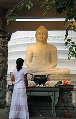 Budda and the lady (Rjay84) Tags: budda temple sri lanka asia gangaramaya religion budism budist belief