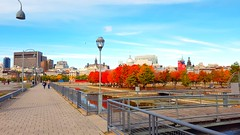 Quiet fall morning (Galactic Dawn) Tags: montreal quebec morning autumn vieuxport