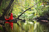 Red in the Green (Rita Eberle-Wessner) Tags: landscape landschaft seychellen ladigue urwald primevalforest forest bach creek palmen palm frau lady dress red green reflection woods