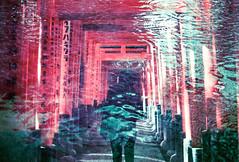 Mind Drip (Hayden_Williams) Tags: drip ripples reflection ripple water pond inarishrine inari toriigate kyoto japan travel explore asia film analog analogue canonae1 fd50mmf18 lomography lomo lomochromepurplexr100400 doubleexposure multipleexposure