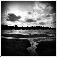 Rose Bay dog beach, 2015. (Albion Harrison-Naish) Tags: rosebay sydney sydneyharbour newsouthwales australia rosebaydogbeach landscape mobilephotography iphoneography iphone iphone5s hipstamatic lowylens aobwfilm unedited straightoutofcamera sooc